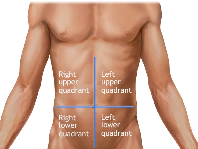 abdominal quadrants