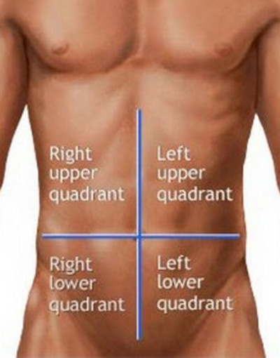 abdominal quadrants human body